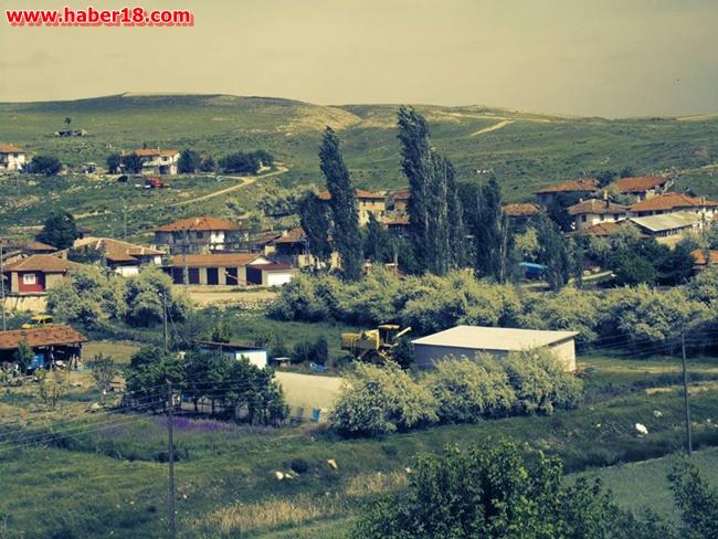 Tuzlu Köyü
