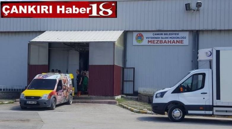 Çankırı Belediyesi Kurban Kesim İçin Randevular 23 Temmuz'da Başlıyor - Çankırı Belediye Haber18 - attorney at law ,boat yacht  wealth luxury
