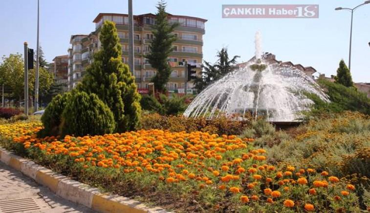 Çankırı Belediyesi, 30 bin kadife çiçeğini şehrin toprak ile buluşturdu - Çankırı Belediye Haber18 - attorney at law ,boat yacht  wealth luxury