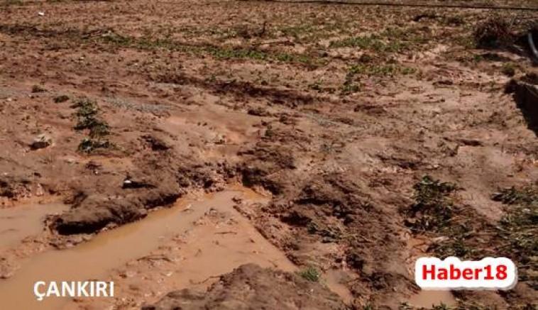 Kızılırmak'ta Ekili Alanlar Zarar Gördü - Kızılırmak - Çankırı - haber18