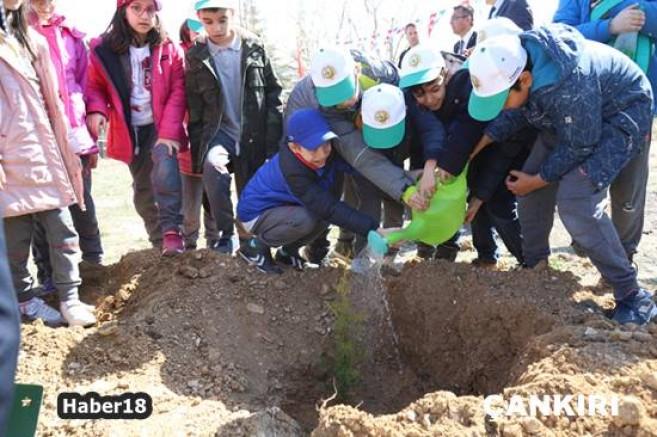 Minik Öğrenciler Doğa Yürüyüşü ve Fidan Dikimi Yaptı - Valilik - Çankırı - haber18