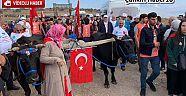 10. İstiklal Yolu Yürüyüşü gerçekleştirildi  Haberleri - Çankırı Haber18