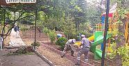 Belediye, Kafe Çalışmaları Başlattı - Şabanözü - Çankırı - haber18