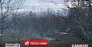 Çankırı - haber18 - Çankırı 'da Geçe Boyu  Islak Saman Balyaları Yaktılar - Eldivan Haberleri