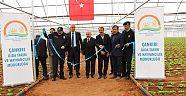 Çankırı - haber18 - Çankırı'nın En Büyük İkinci Serasının Açılışını Gerçekleştirdiler - İl Tarım ve Orman Müdürlüğü