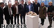 Güzel Sanatlar Fakültesi Yıl Sonu Sergisi Gerçekleştirildi - Üniversite - Çankırı - haber18