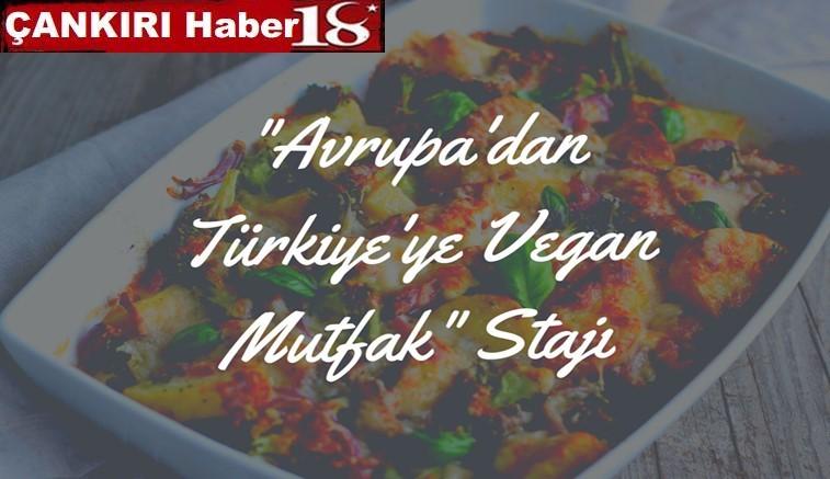 50.064€ luk Avrupa'dan Türkiye'ye Vegan Mutfak Stajı Projesi Kabul Edildi - Çankırı Eğitim Haber18 - attorney at law ,boat yacht  wealth luxury