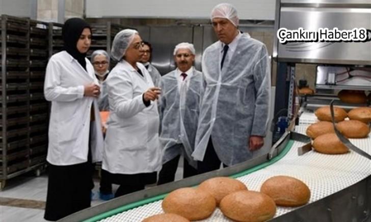 Vali Hamdi Bilge Aktaş, Ekmek Üretim Yerlerini Denetledi - İl Tarım ve Orman Müdürlüğü - Çankırı - Haber 18